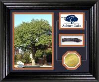 auburn-oaks-mid-size