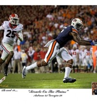 miracle on the plains pitts print
