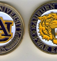 au painted coin
