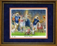 miracle boom framed