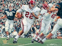 iron bowl gold 1971 hannah