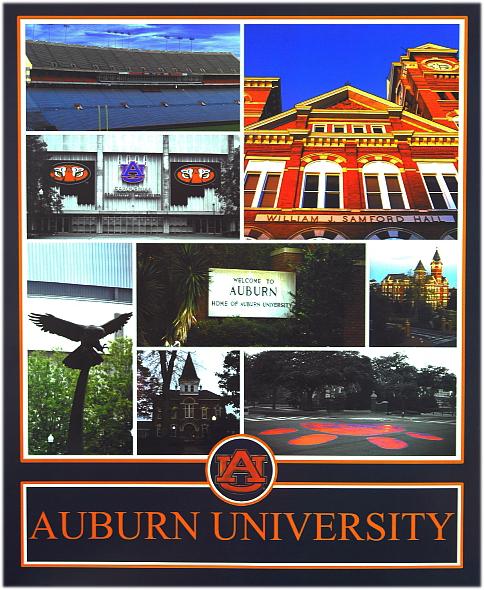Auburn_Collage.jpg