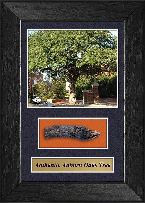 authentic-auburn-oaks-5x7.jpg