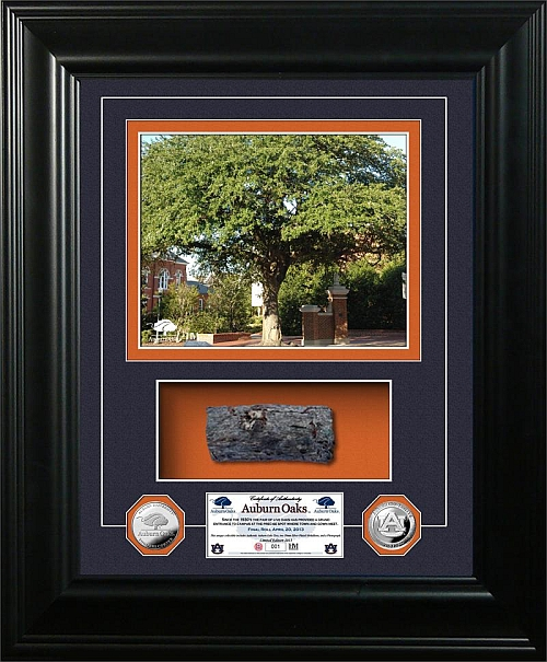 authentic-auburn-oaks-large.jpg